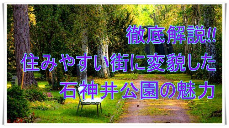 解説!!住みやすい街に変貌した石神井公園の魅力